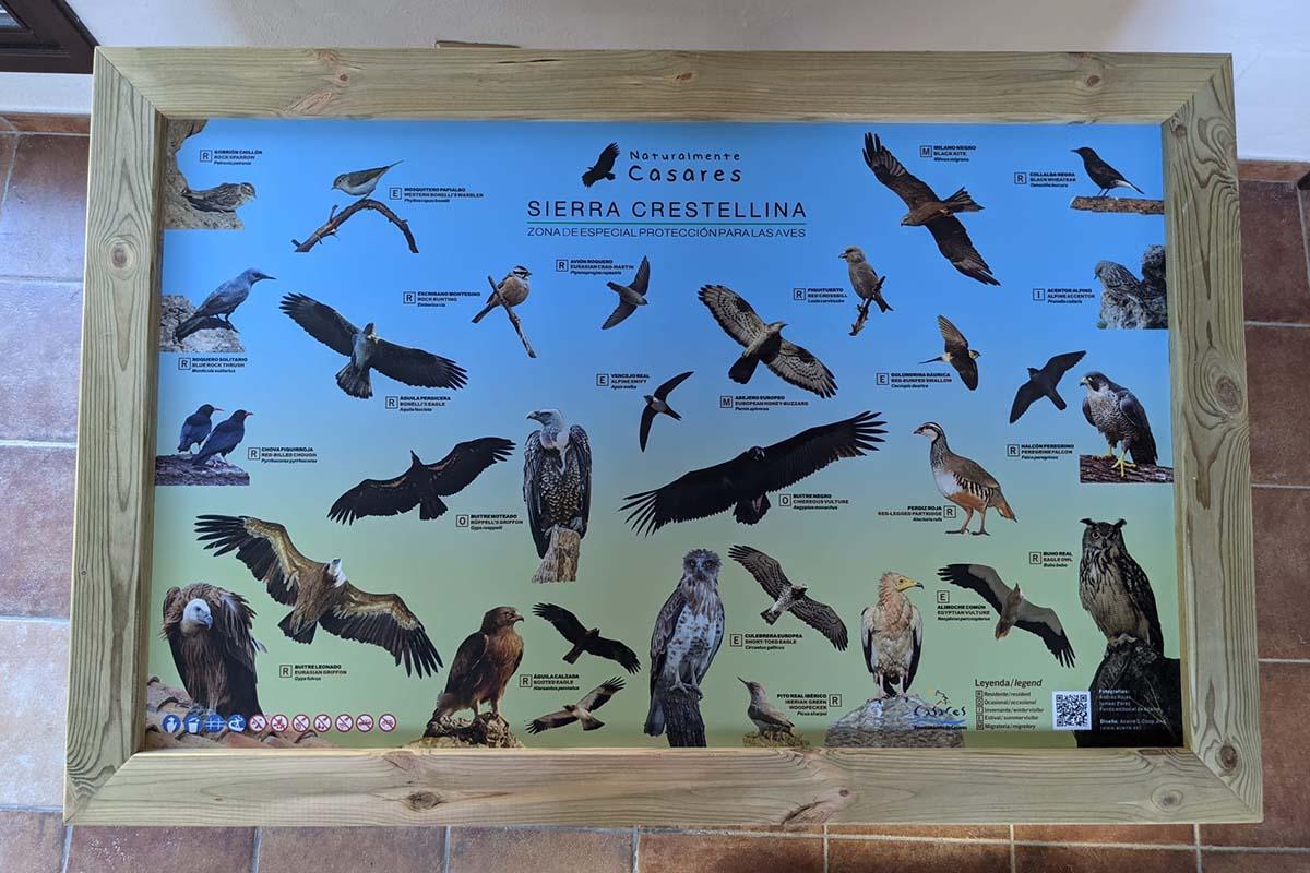 Panel de ornitología Sierra Crestellina (Casares)